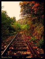 Forest Line V by AlexBlood