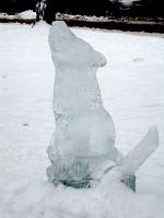 Iced Wolf by botskey