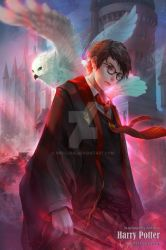 Harry Potter by antilous