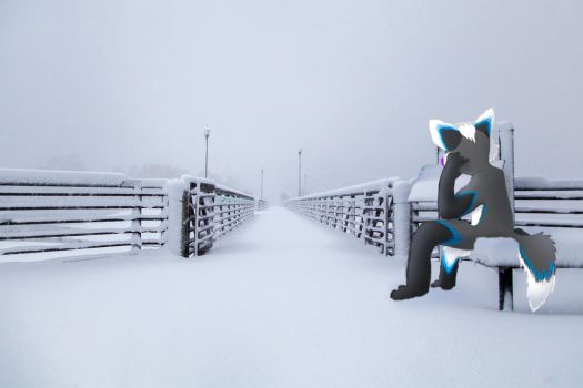 Waiting for the Storm by StormCoyfolf