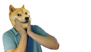 Such Doge (PNG) by Vendus