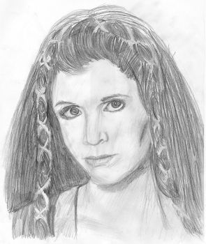 Leia Organa Skywalker by swfan444