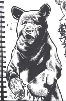 somebody in a bear outfit by captainrosteck