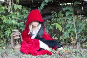 Little red riding hood stock 13 by HigherSeeking