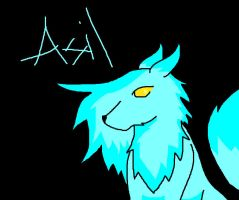 Asil by Aimorragia