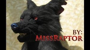 Black wolf with long ears Video by MissRaptor