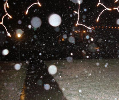 It does snow in New Mexico by Tejal