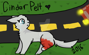 CinderPelt 2016 by Bindiluckycat