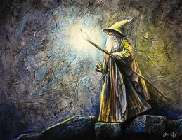 Gandalf the Gray by spong0949