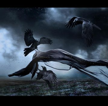 Flight of Ravens by Aeternum-designs
