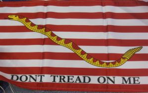 First Navy Jack by rlkitterman
