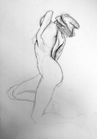 Female nude by Stalky-Jack