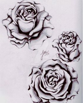 Rose sketches by devilschild669