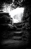 Entrance To The Mystical Zone by LeWelsch