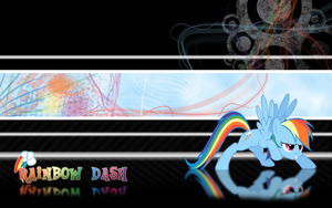 FiM: Rainbow Dash Wallpaper 2 by M24Designs