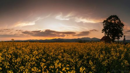 May evening by LuCfreeAs