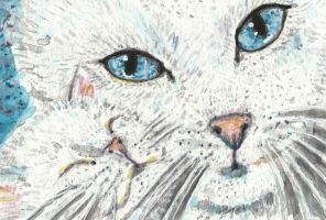 Mother and baby cat  white  watercolor by tulipteardrops