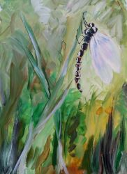 Dragonfly by KateHodges