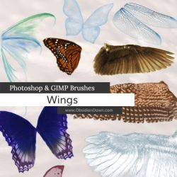 Wings Photoshop and GIMP Brushes by redheadstock