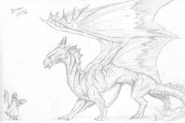 Bronze Dragon (Scanned) by Nikzt
