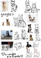 Front Views: Canines: Mini Tutorial by i-Moosker