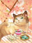 Sushi Cat Dessert First by BlueBirdie
