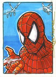 First Spider-man of 2008 by gravyboy