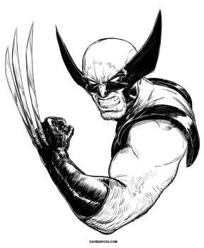 Wolverine Inks by DaveRapoza