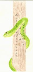 Tree Snake by DiG-IT21