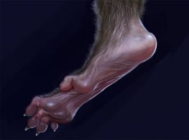Werewolf Foot Detail by liminalbean