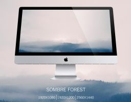 Sombre Forest by Peleber