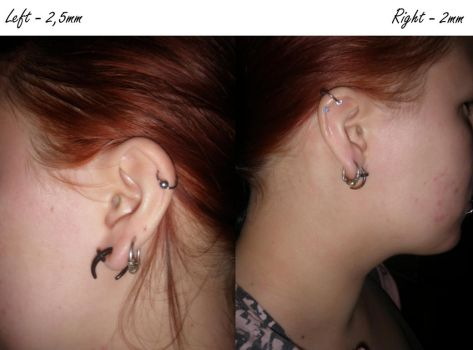 Ear lobe stretching project - 2/2,5mm by Morthax