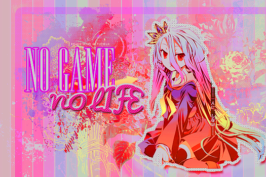 No game, no life by EchoEnchanted