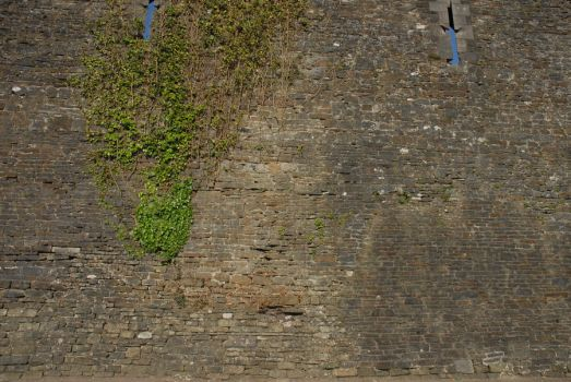 Caerphilly Castle Texture HQ02 by TomatoSource