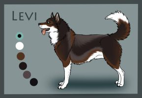 SK's They Call Me Nighthawk: Levi by Sedillo-Kennels