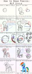 How to Draw Ponies: MLP Style by steffy-beff