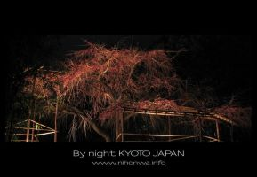 Kyoto by night -3- by Lou-NihonWa
