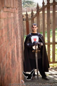 King Stannis by CalamityJade