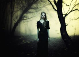 The Pale Lady II by SamBriggs