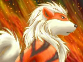 Flaming Arcanine by TakoTank