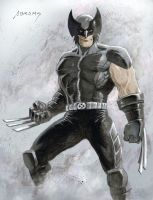 Wolverine Commission by PaulAbrams