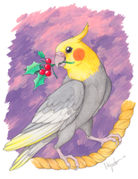 Cockatiel Christmas by Bear-hybrid