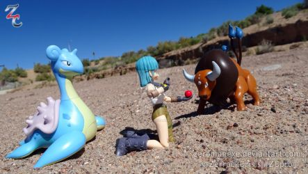 Together with Pokemon, Desert Encounter