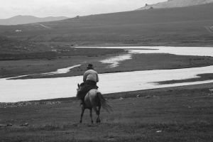 horse rider mongolia by aggix