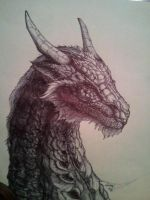 Dragon Sketch WIP by Gingy1380