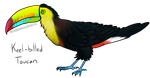 Keel Billed Toucan (LOTGW style) by GreenWingSpino32