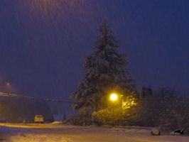 Snowstorm At Night by wolfwings1
