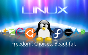 Linux Wallpaper 1.1 by technokoopa