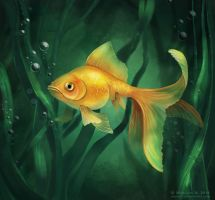 Gold Fish by NM-art