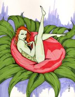 poison ivy by road2damascus